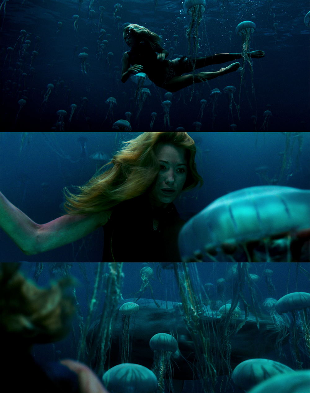the-shallows-nanni-cobretti-monster-movie-italia1