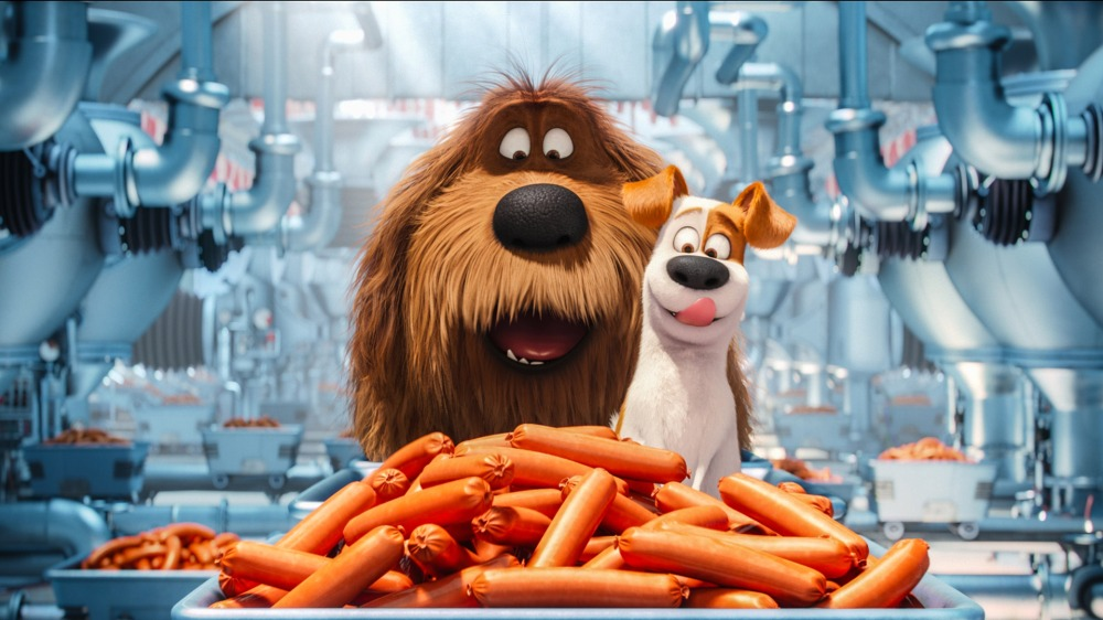 the-secrete-life-of-pets-animated-movie-on
