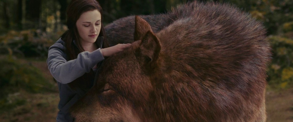 bella_and_the_wolf-love-hot-twilight