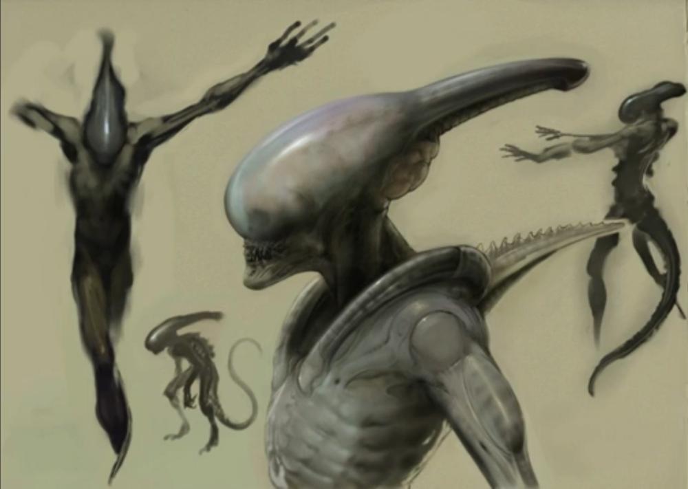 Ultramorph2