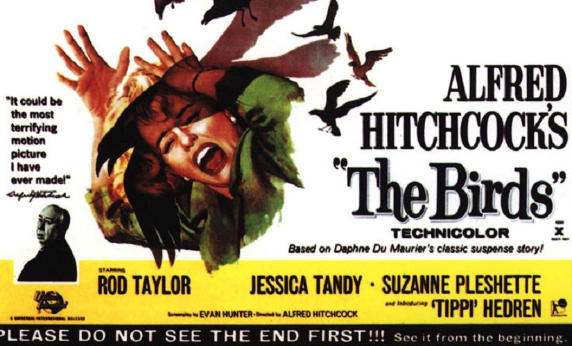 The-Birds-poster-listicle