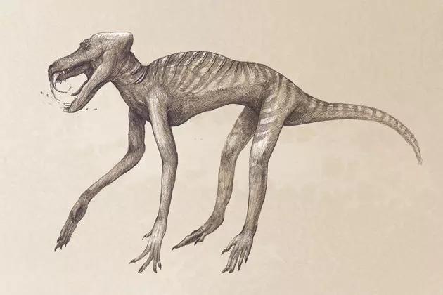 babbuino originale senza pelo e grasso monster bestiario