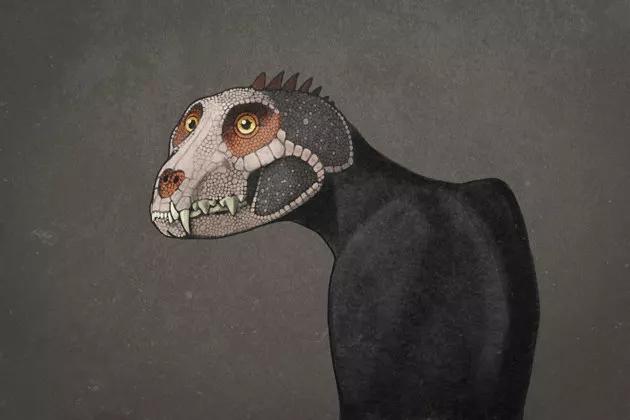 cat gatto senz apelo dinosauri preisotri amonste rmovie