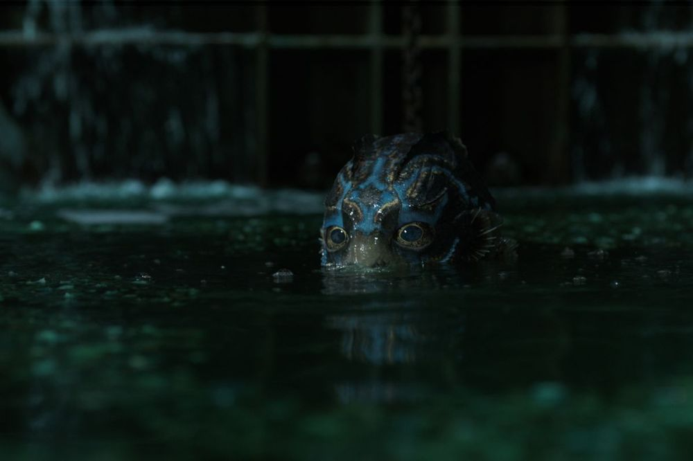 shapeofwater_crop.0.jpg