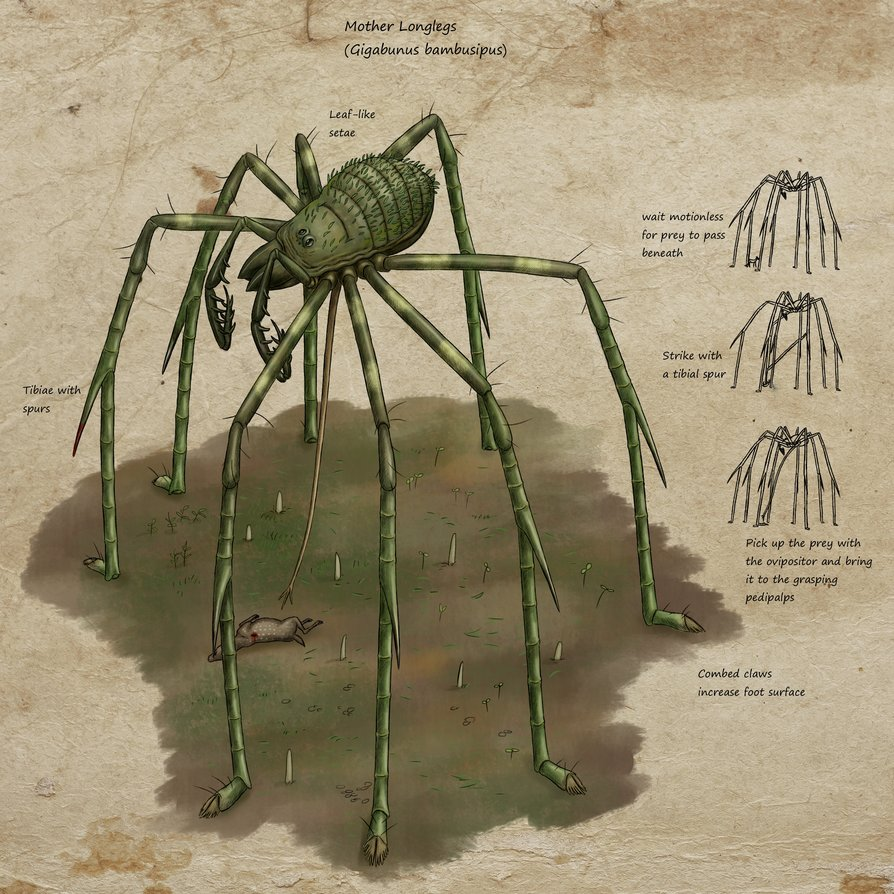 speculative_k_si_bullshit__mother_longlegs_by_ramul-dbg0rht.jpg