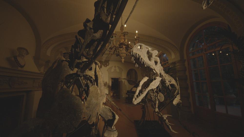 Dinosaurs-press-04.jpg