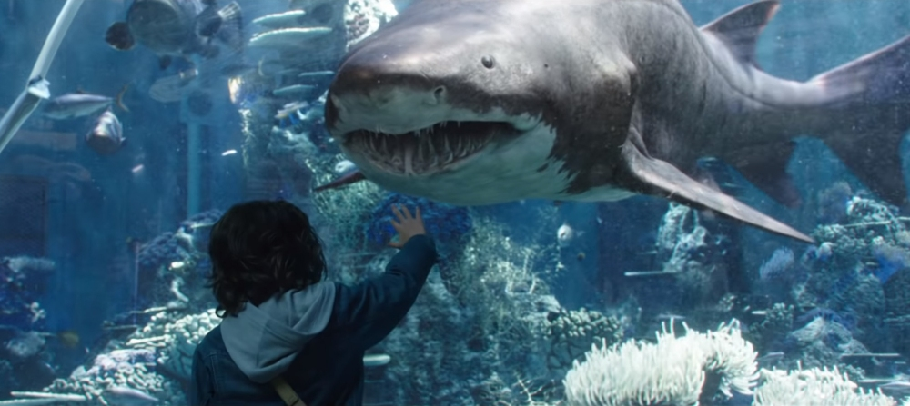 Aquaman_Aquarium_Shark Tiger Scene1.jpg