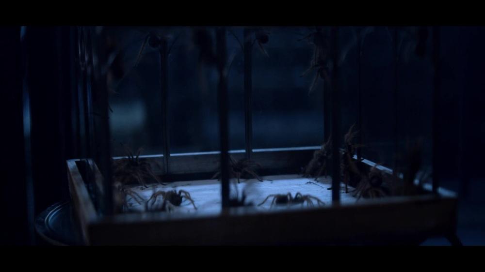 ragni_sabrina_avventure_monster_movie.jpg